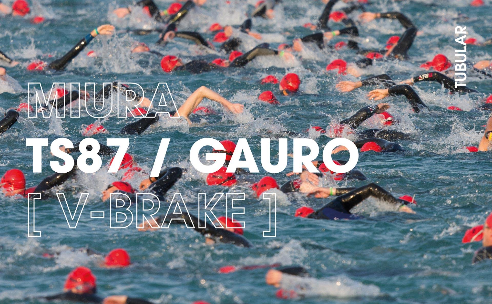 Triathlon_TS87GAURO_cover